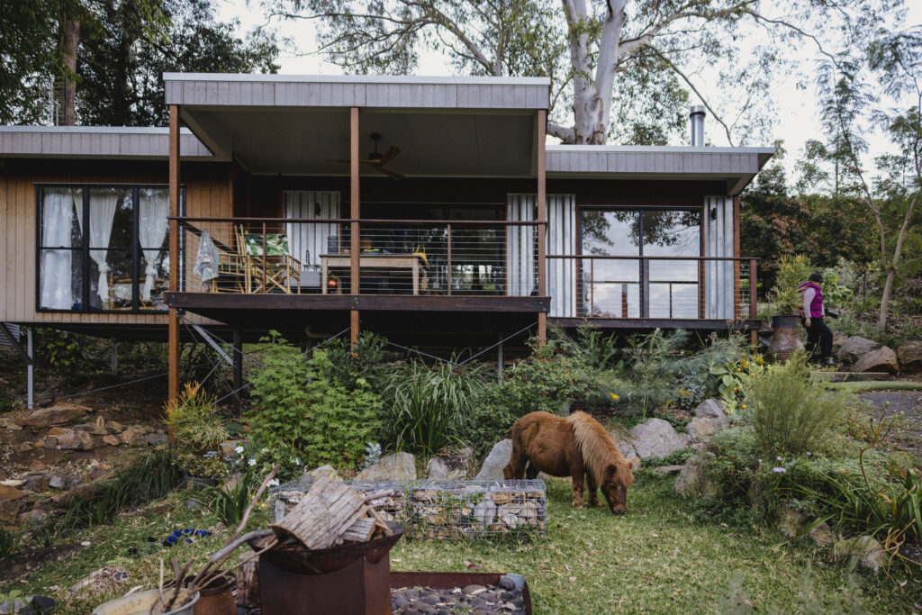The Wilds Container Home Airbnb with the miniature horse grazing on grass at the front of the home.